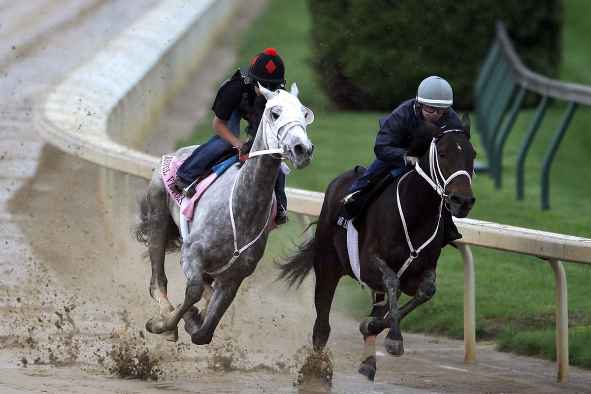 LOUISVILLE, KY - MAY 01: Joyful Victory works out during the morning exercise session in preparation for the 137th Kentucky Oaks at Churchill Downs on May 1, 2011 in Louisville, Kentucky.  (Photo by Matthew Stockman/Getty Images)