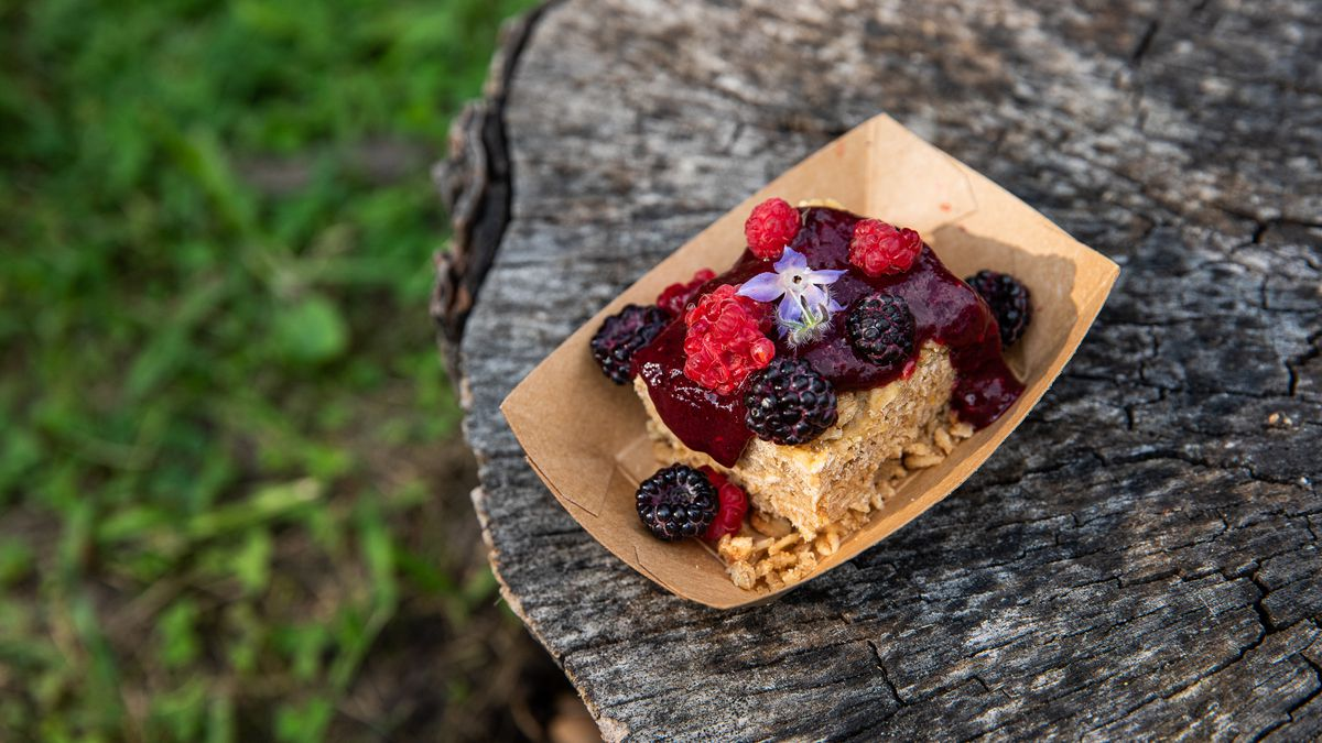 A brown paper boat filled with a slice of cake covered in fruit compote and whole raspberries and blackberries sits on a tree stump.