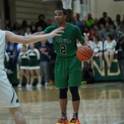 Notre Dame's Anthony Sayles (2) directs the offense against St. Patrick, Friday 02-08-19. Worsom Robinson/For the Sun-Times.