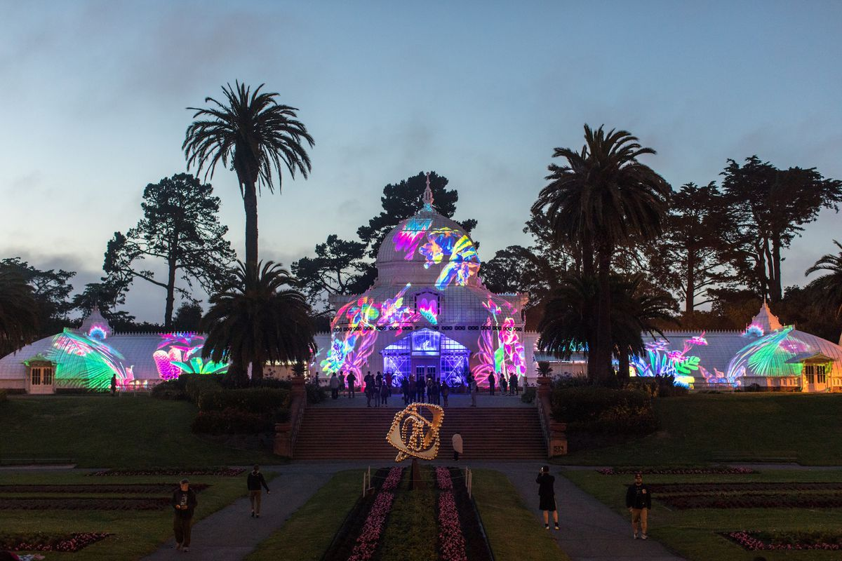 conservatory of flowers lights up for summer of love curbed sf