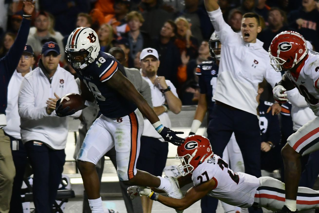 COLLEGE FOOTBALL: NOV 16 Georgia at Auburn
