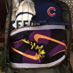 Cubs Go Bag