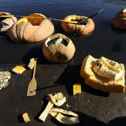 Pumpkins over 1000 pounds were carved out for boats to participate in the 2013 Mountain Valley Seed Co. Ginormous Pumpkin Regatta at Sugarhouse Park on Saturday, October 19, 2013.