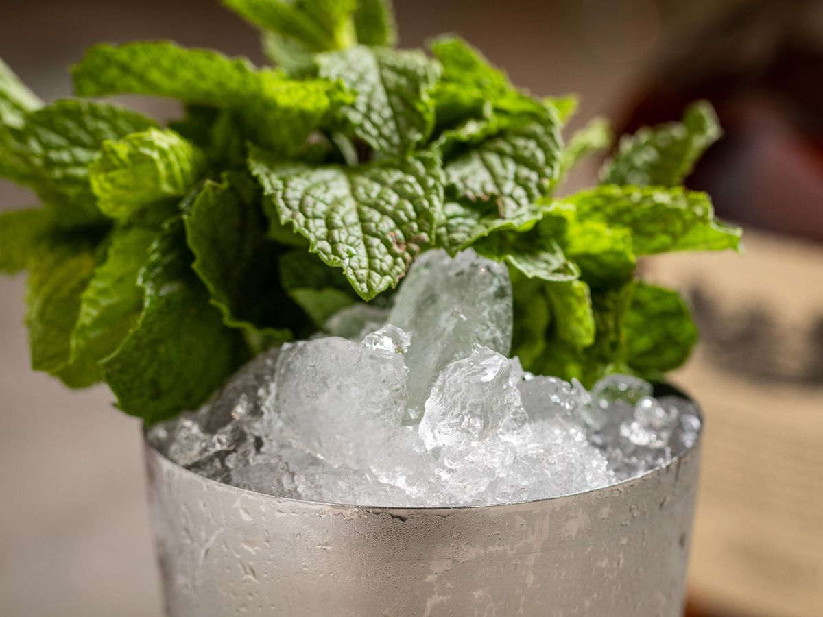 The mint julep at the Four Seasons Hotel Austin
