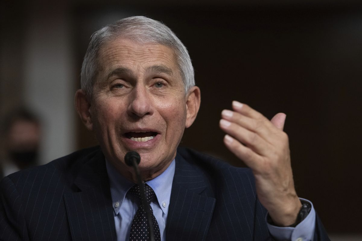 Dr. Anthony Fauci, Director of the National Institute of Allergy and Infectious Diseases at the National Institutes of Health, listens during a Senate Senate Health, Education, Labor, and Pensions Committee Hearing on the federal government response to COVID-19 Capitol Hill on Wednesday, Sept. 23, 2020, in Washington.