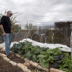 In this, Tuesday, Nov. 8, 2011, photo, Dr. Dewayne Nash checks out his garden at his home in Bertram, Texas.  Dr. Nash a former family doctor practicing medicine in Bertram is diagnosed with AlzheimerÍs disease.