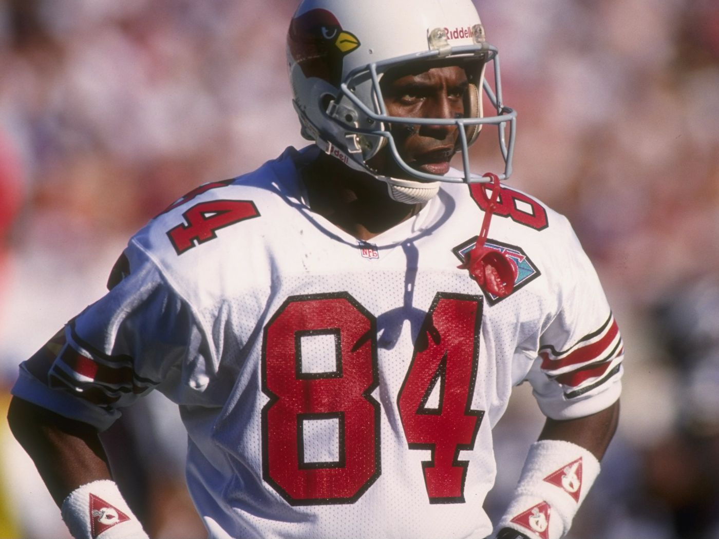 4e79517f5c5e 2015 NFL Countdown  The History of Arizona Cardinals Jersey Number 84 -  Revenge of the Birds