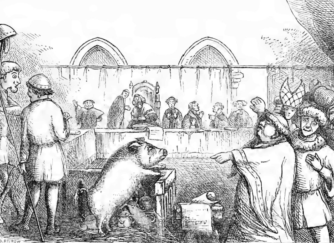 The execution of a sow