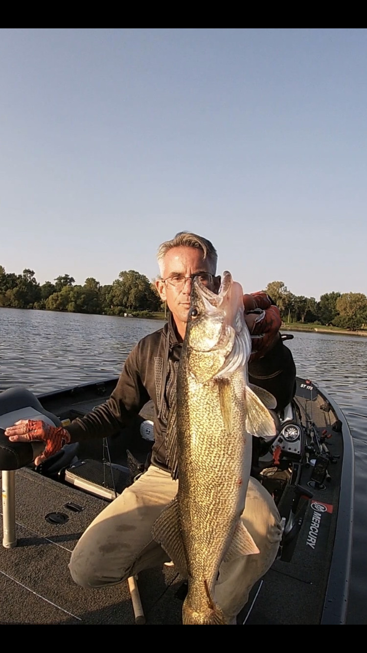 Bob Johnson with a good mix of fish from the Kankakee River, including a walleye. Provided photo