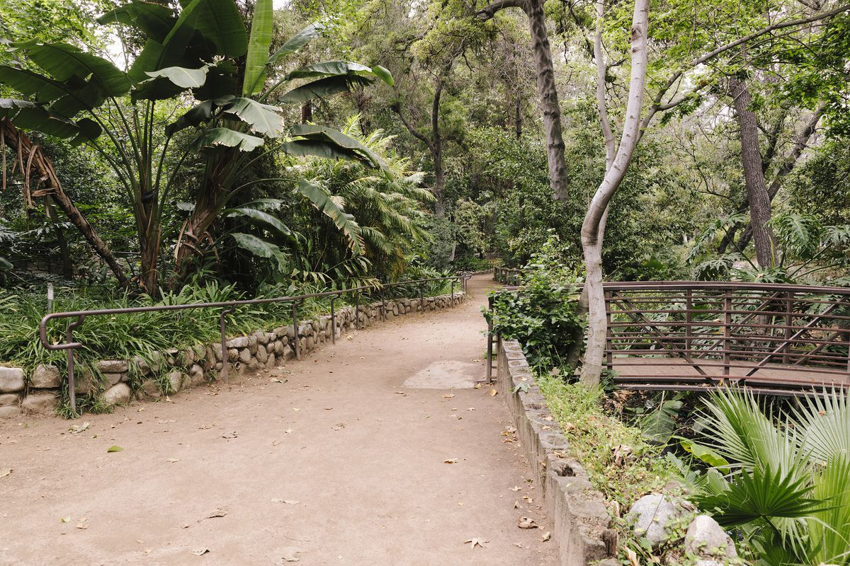 Lush greenery with a dirt pathway and small bridge going off of the right side of the frame.