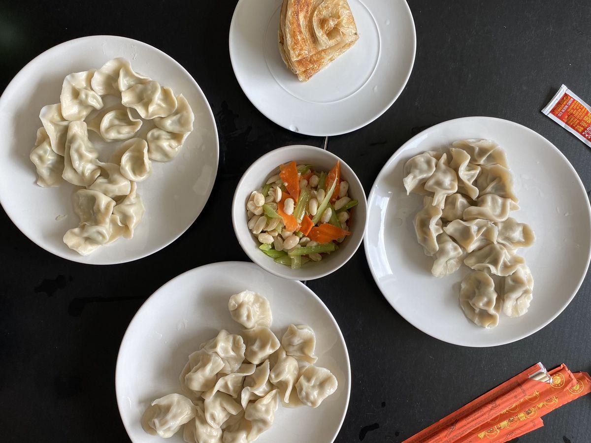 Takeout dumplings from New Dumpling