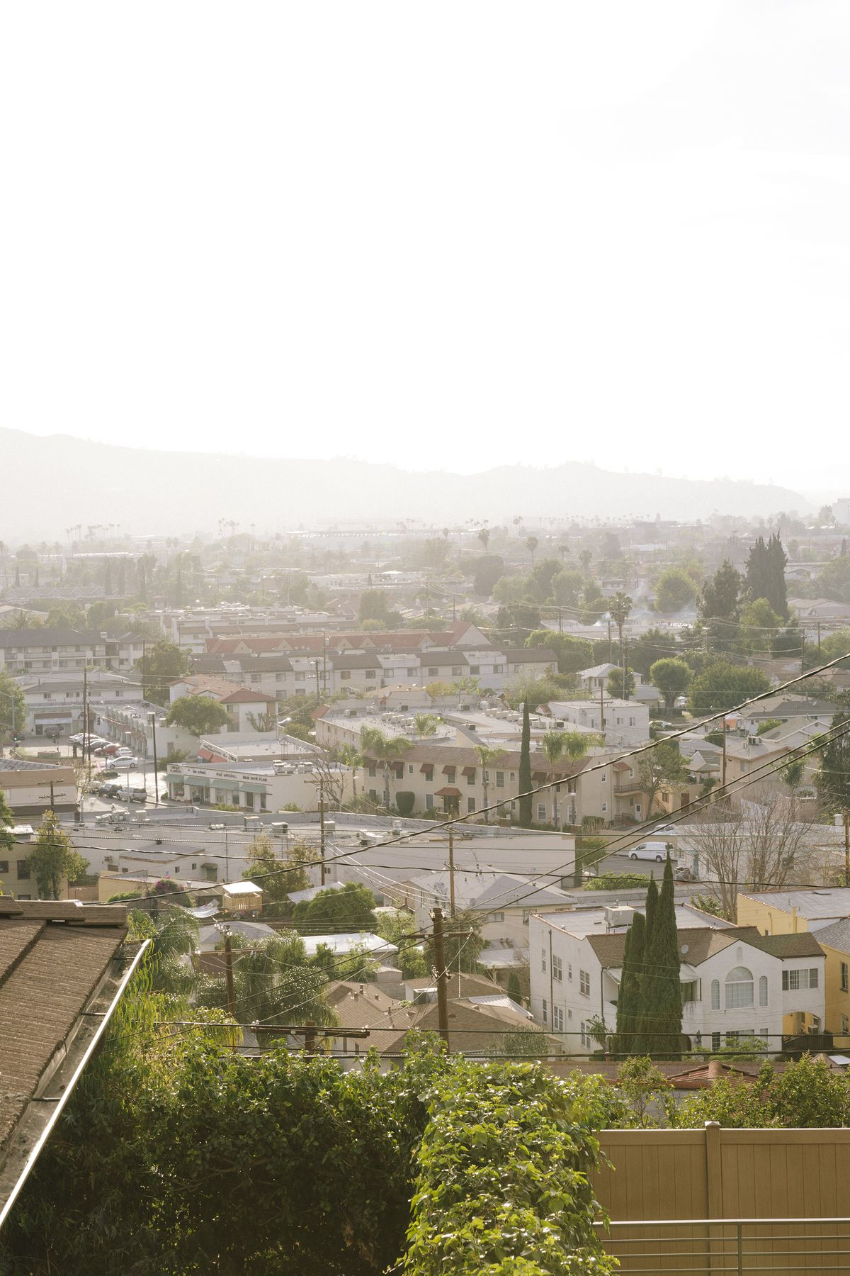 Aerial view of a dense city neighborhood populated with trees. Hills in the background.