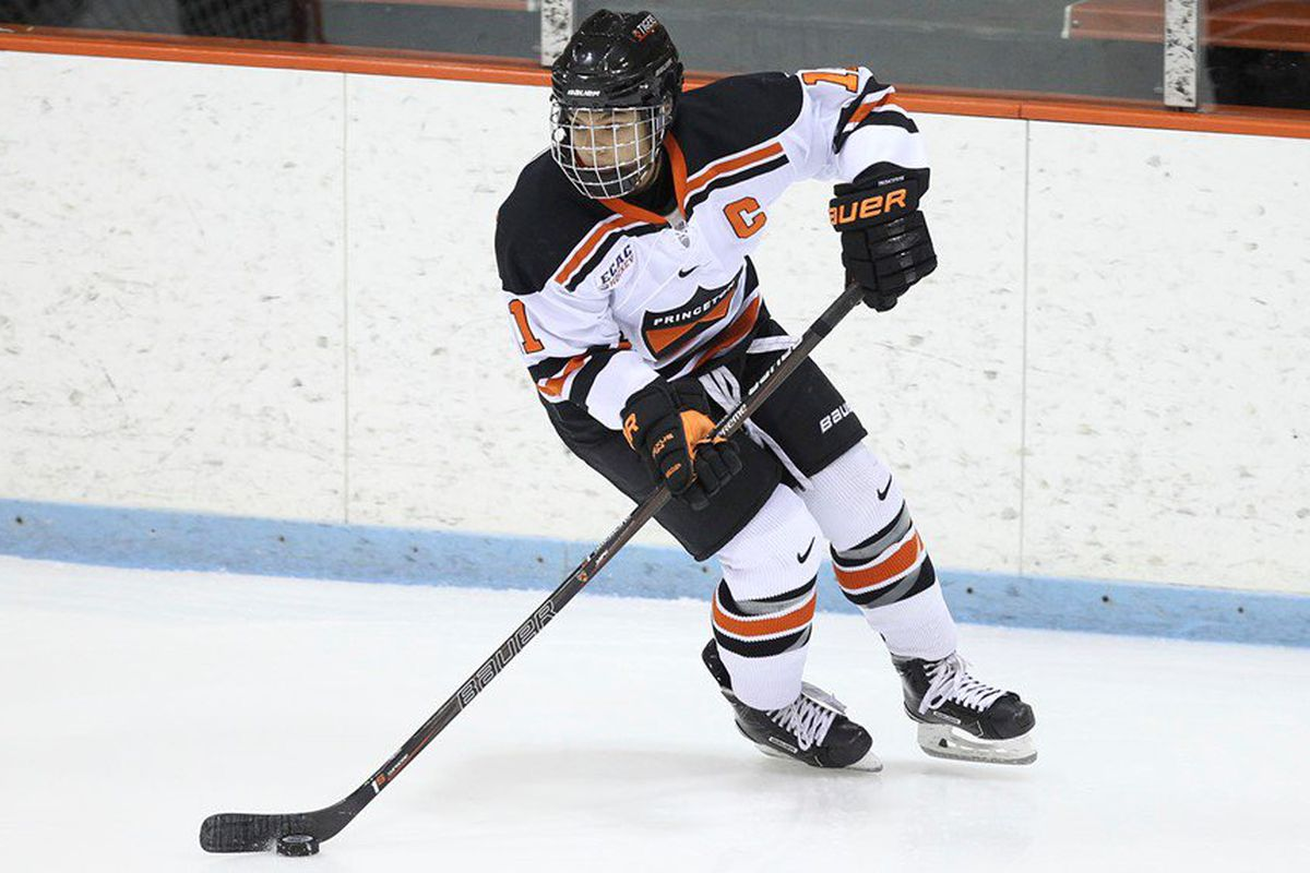 f8bda946e59 NWHL Draft Pick Watch  Who will be available for the postseason ...