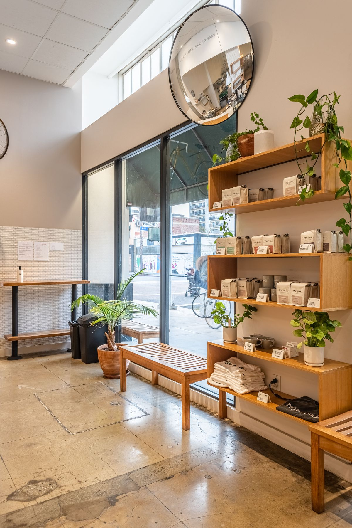 Seating, plants, and coffee bean bags at a new coffee shop.