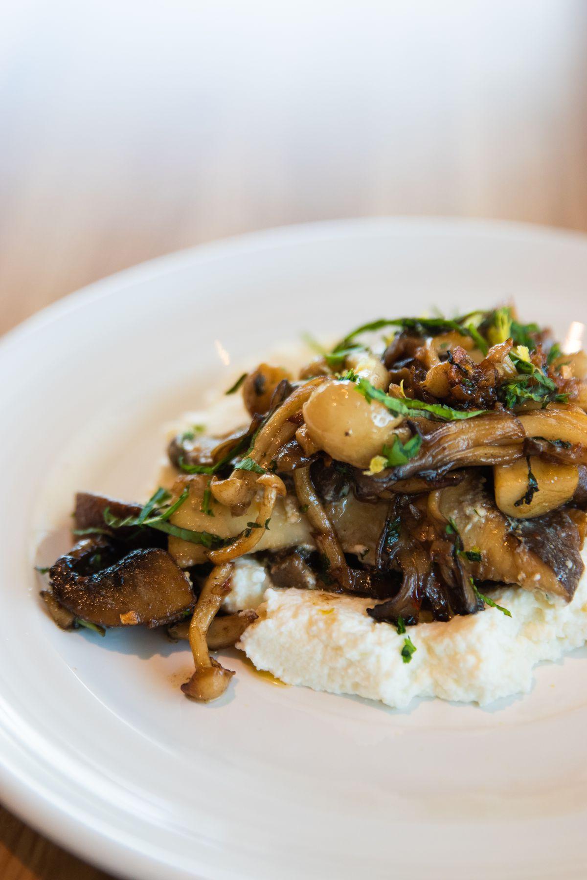 The mushroom ricotta at Cookbook Cafe