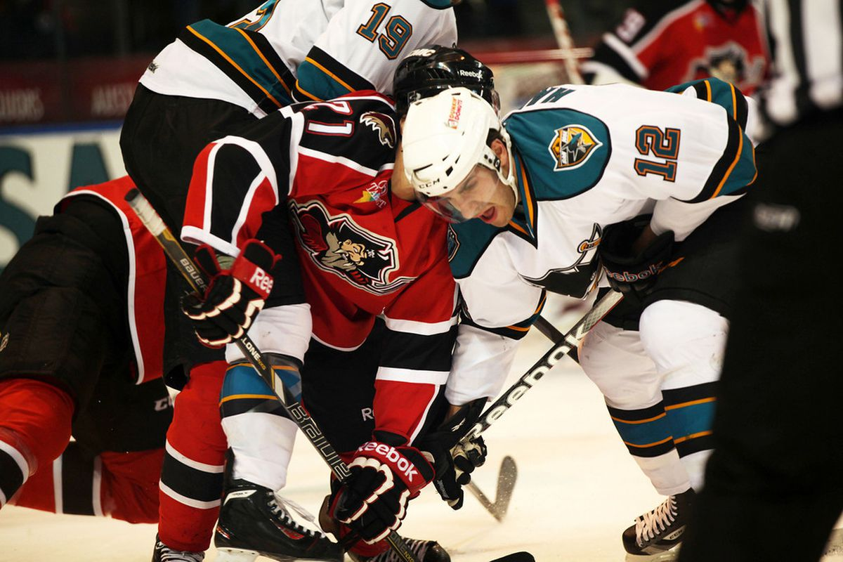 Worcester Sharks forward Freddie Hamilton battles for a face-off win against the Portland Pirates at the DCU Center Sunday afternoon.