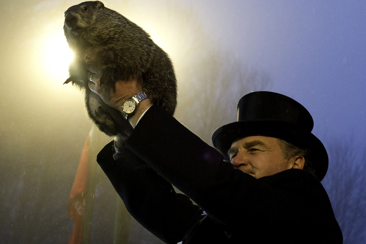 Is this groundhog just bad at his job? Or is he plotting against us?