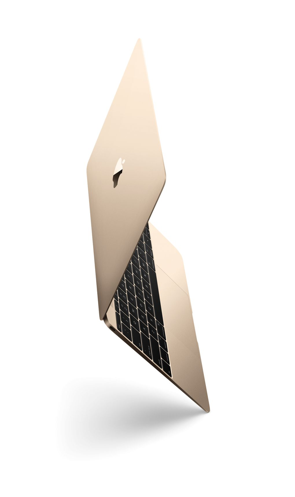 this is the new gold macbook the verge