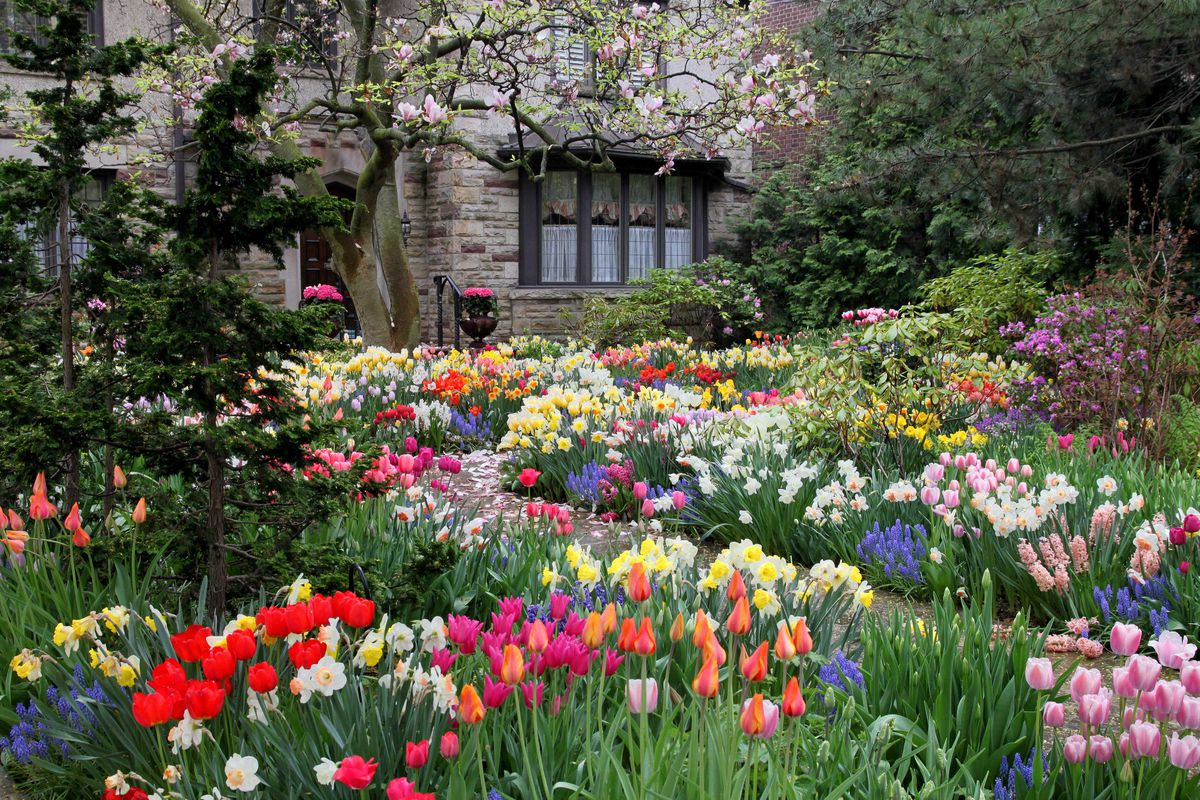The garden outside of a stone house in full bloom.
