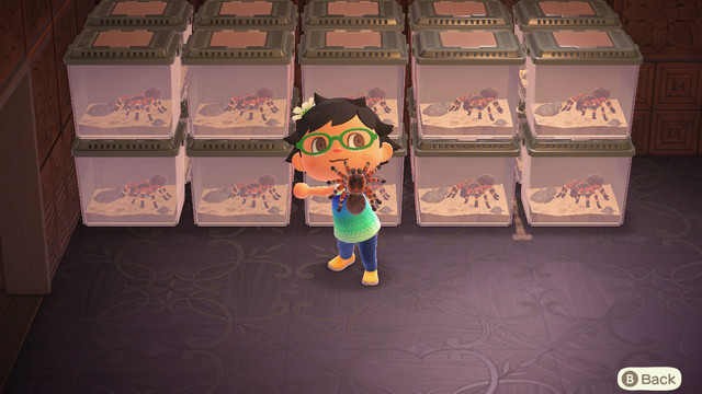 Image of article 'Animal Crossing fans are building tarantula traps, mazes, and more'