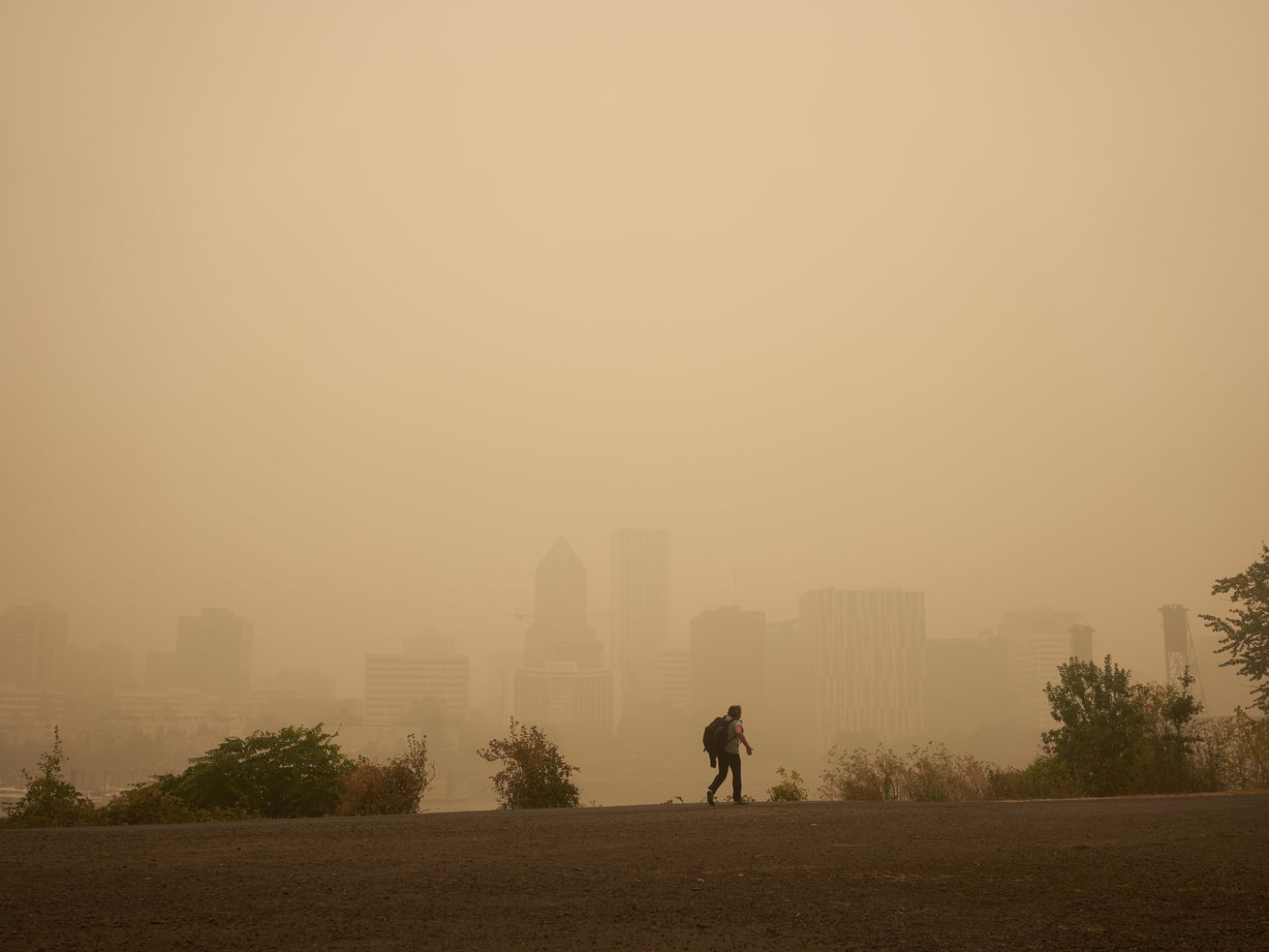 Between the Pandemic and the Air Quality, Portland Restaurant Owners Are Trying to Hold On