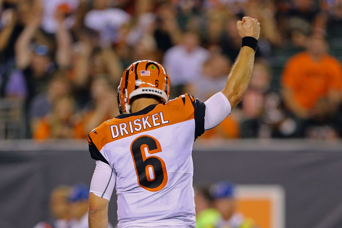 NFL roster news: Bengals bring back QB Jeff Driskel off Injured ...