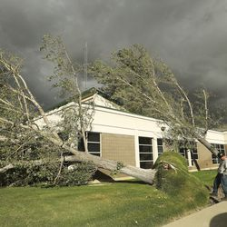 Trees at Granite are toppled from high winds in Salt Lake City on Tuesday, Sept. 8, 2020.