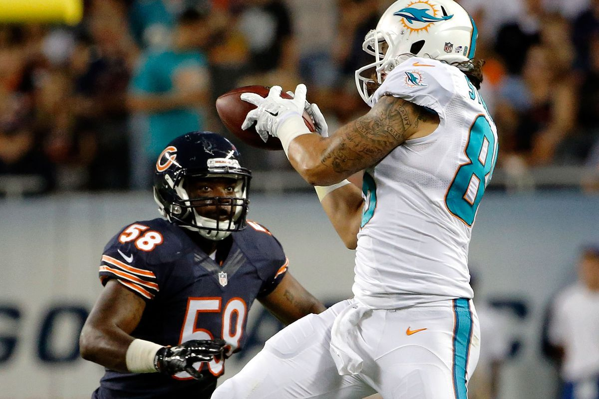 Tight end Jake Stoneburner appears to have played himself into a roster position with the Miami Dolphins this year.