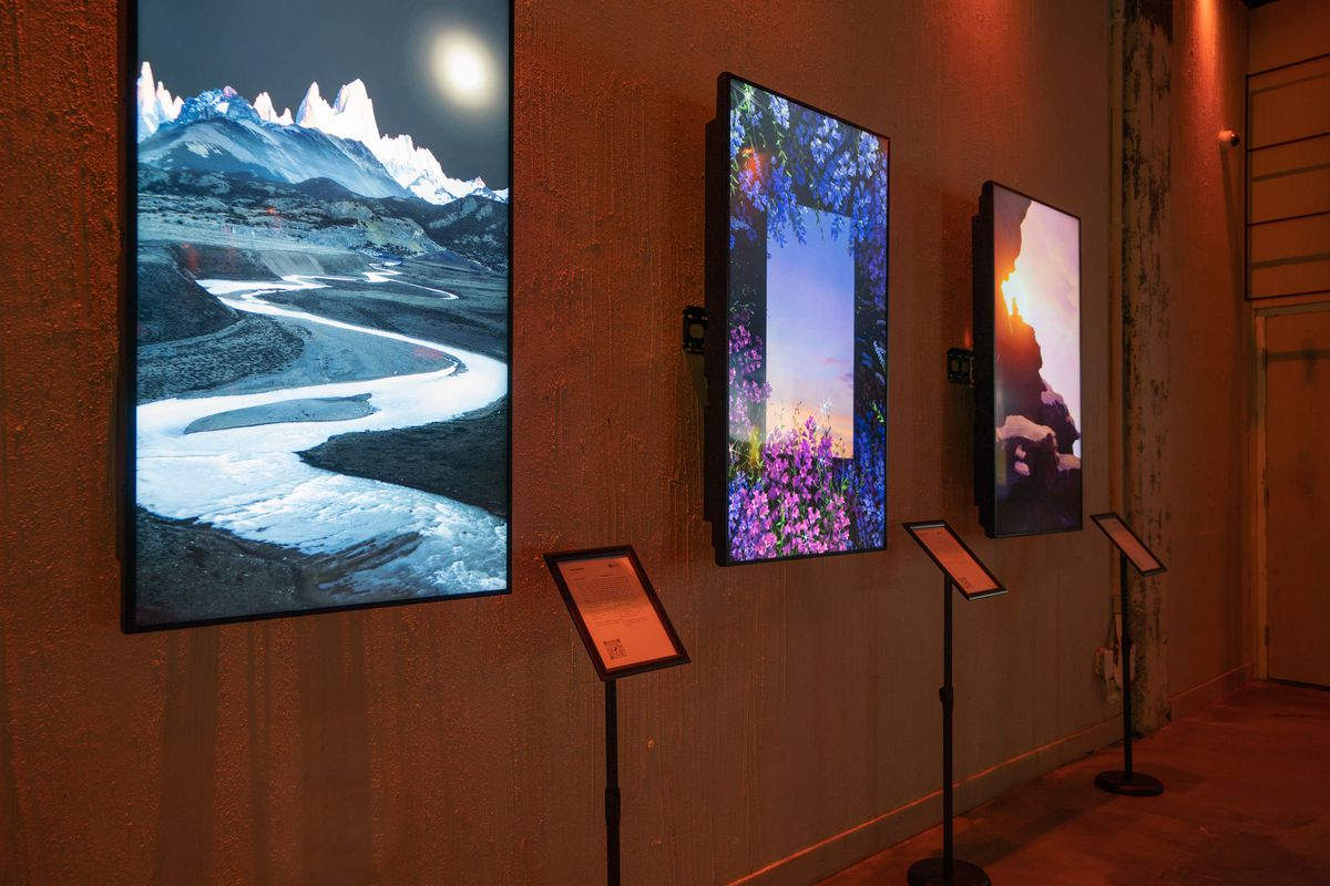 screens with art works
