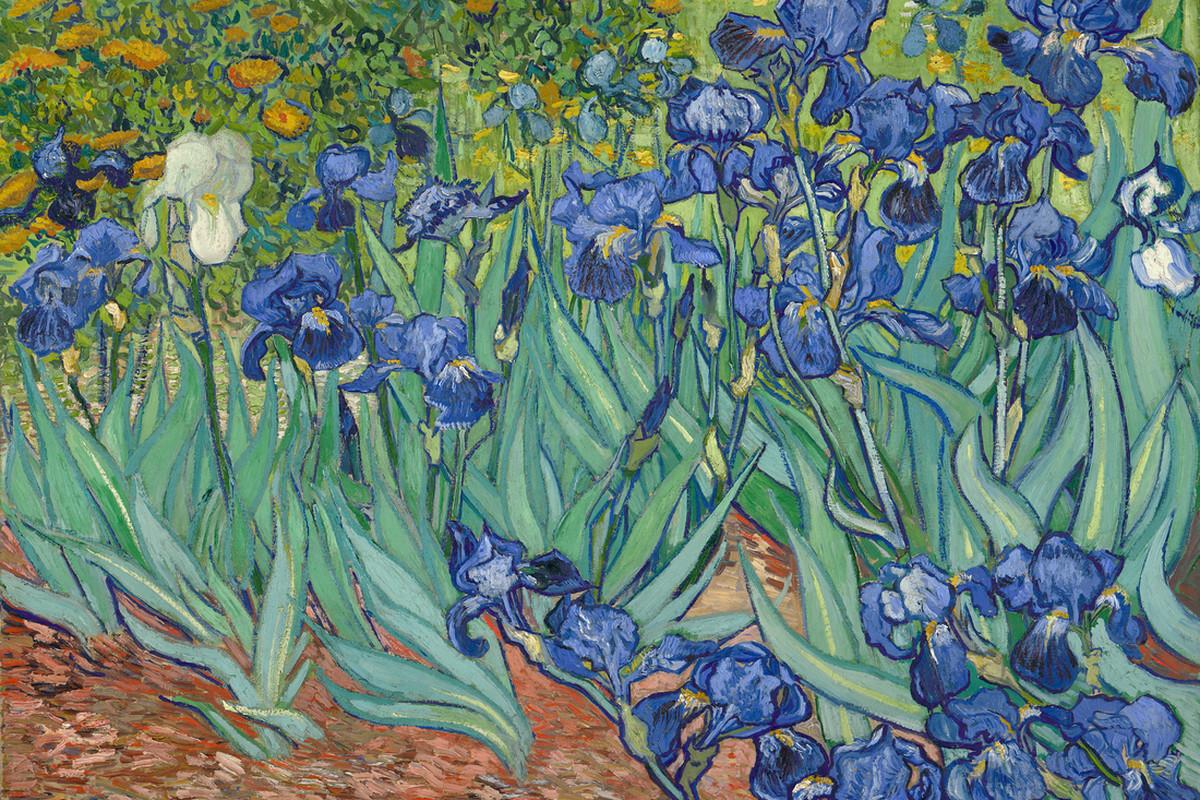 Irises_-_Vincent_van_Gogh.png
