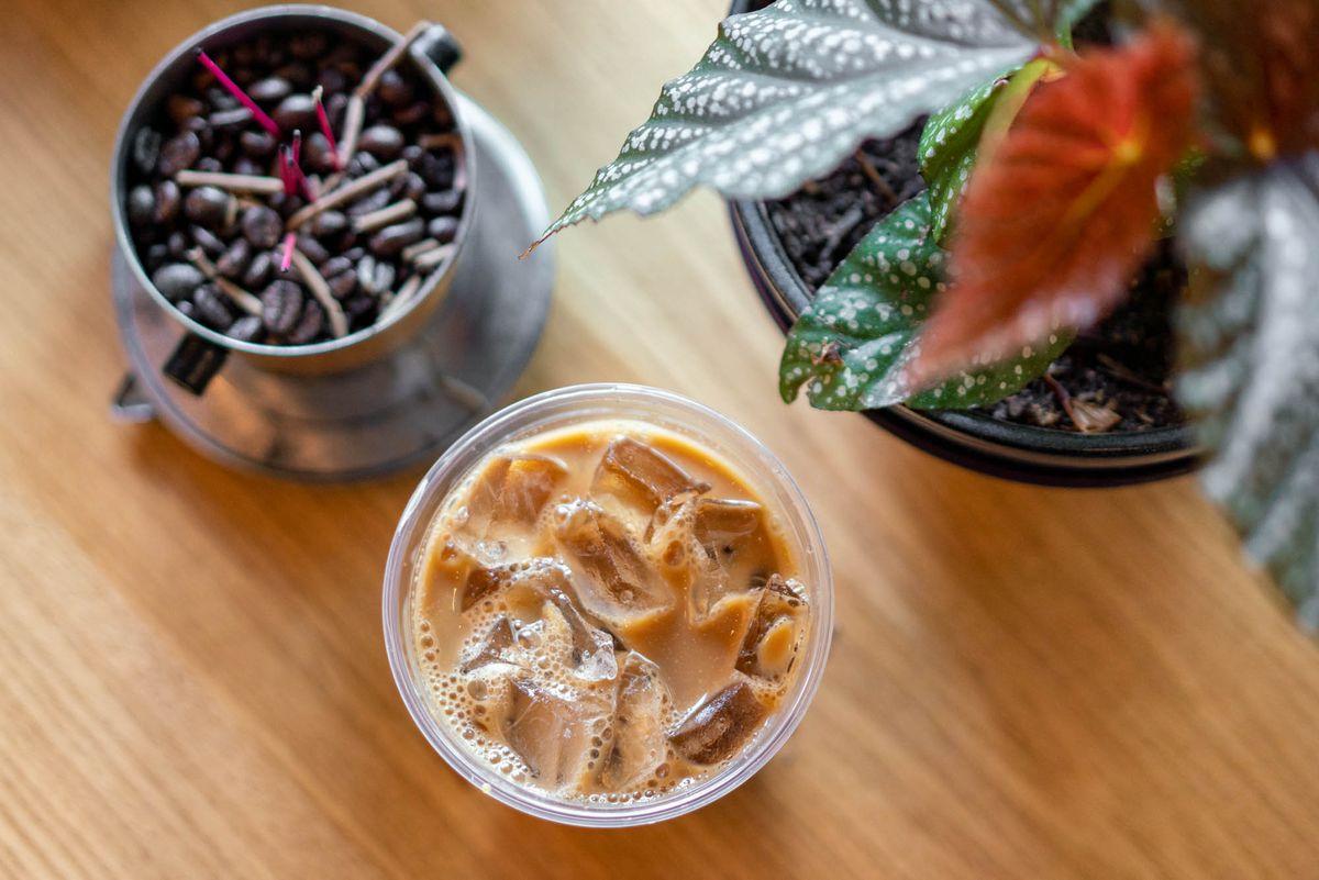 在一个装满咖啡豆和室内植物的锡杯旁边,可以看到一杯冰咖啡