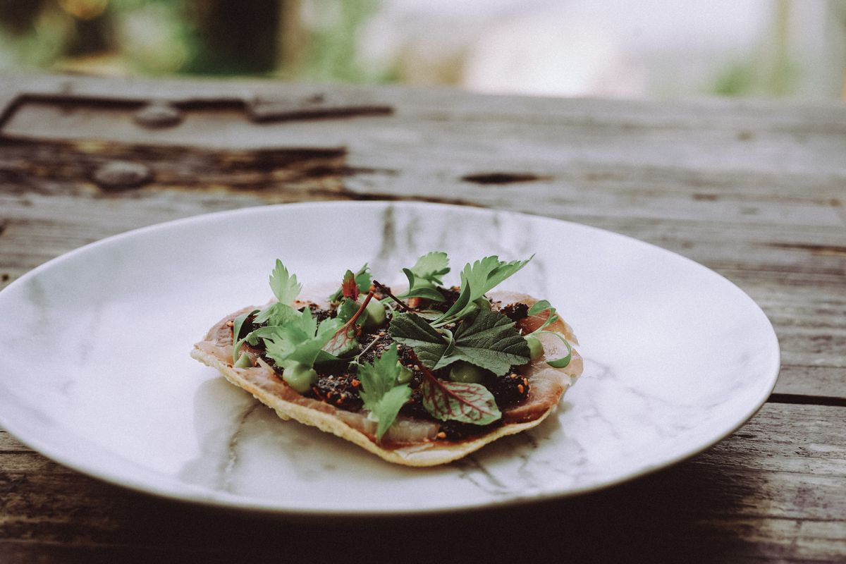 Plate with cured fish tostada at Malva restaurant