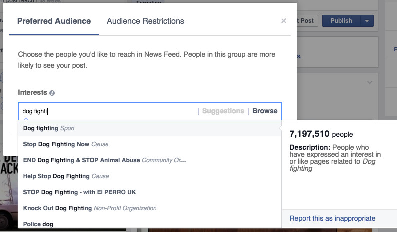 The definitive list of what everyone likes on Facebook | The