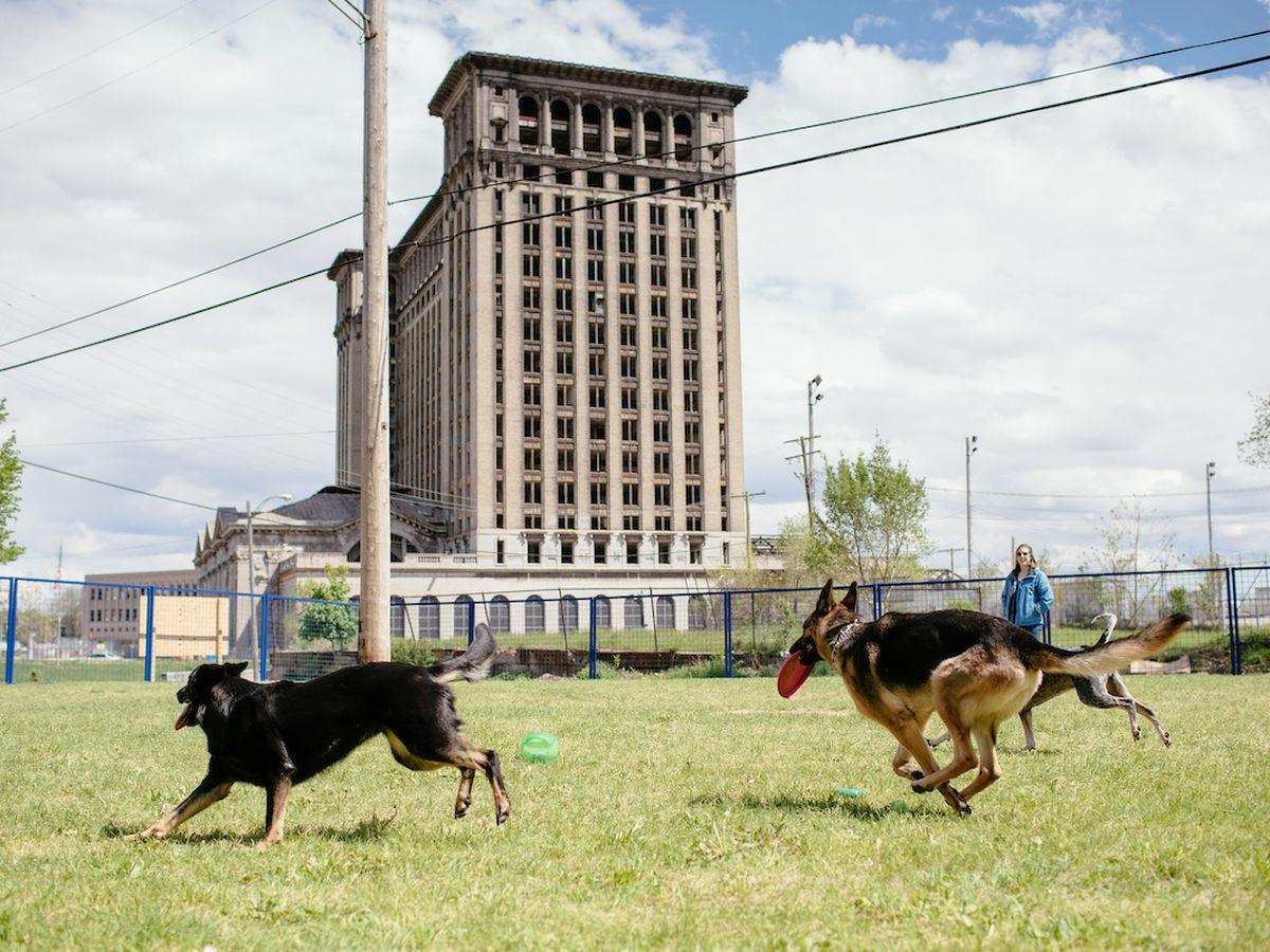 PetSmart Detroit Dog Park in Corktown