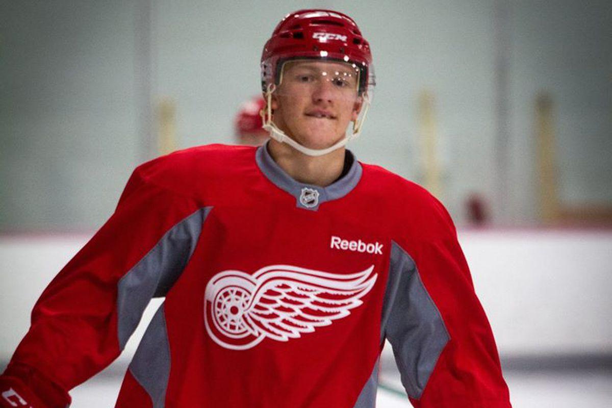 Red Wings 2015 1st Round Draft Pick, Evgeny Svechnikov