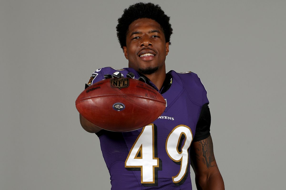 Baltimore Ravens Portraits