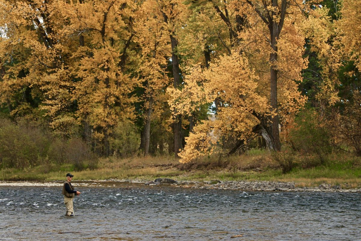 """John Maclean, author of """"Home Waters,"""" fishing the upper Blackfoot River in the fall. Credit:Alec Underwood"""