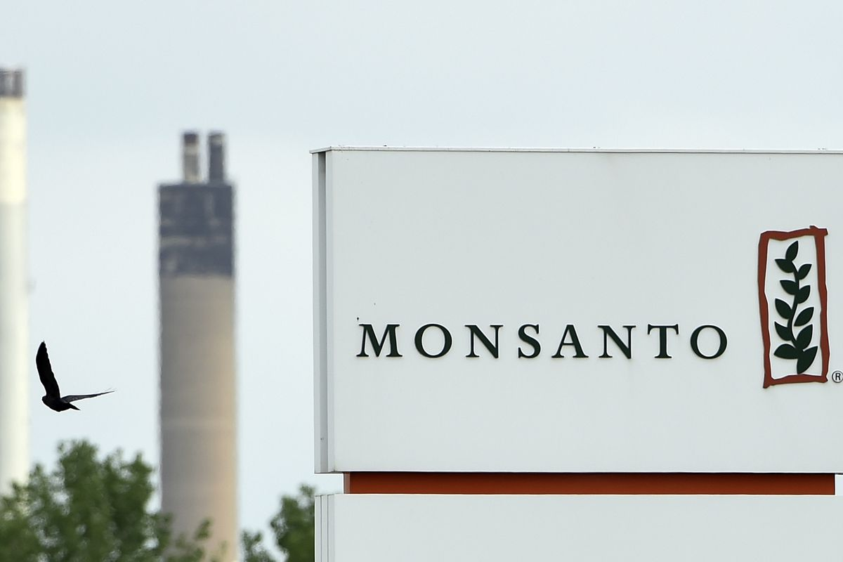 Why Bayer's massive deal to buy Monsanto is so worrisome - Vox