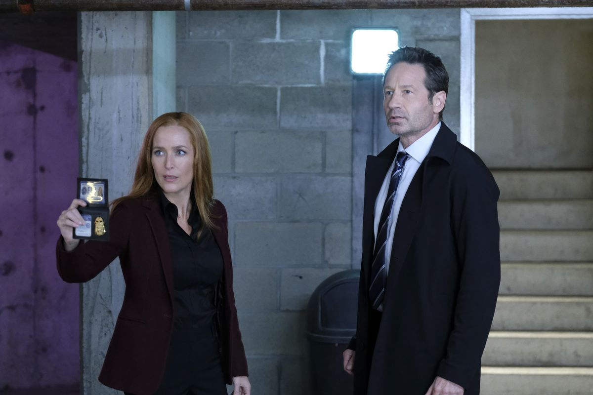 """Gillian Anderson and David Duchovny in """"The Lost Art of Forehead Sweat"""""""