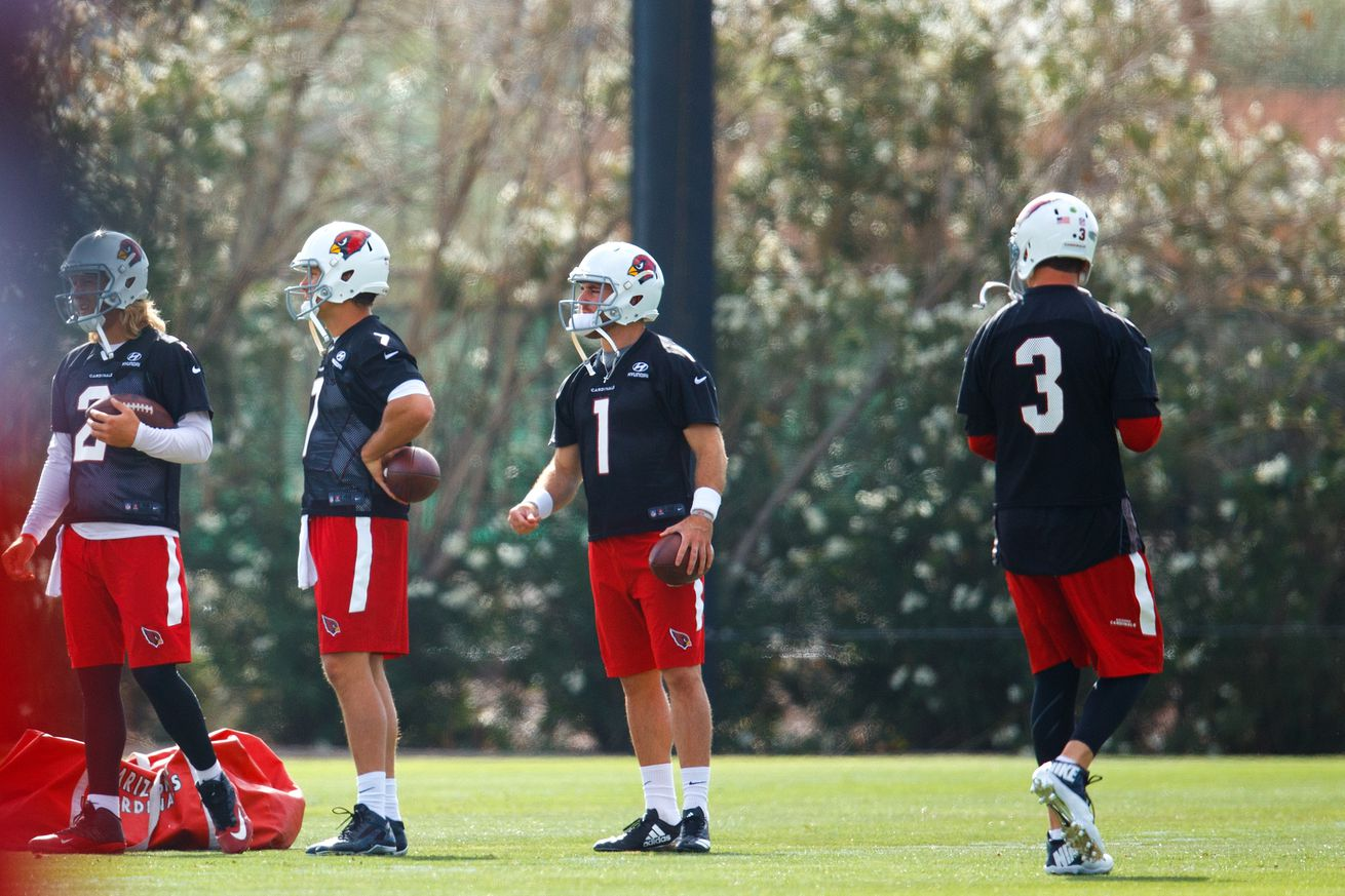 Cards fans, QB drought coming, how many backup QB's and more