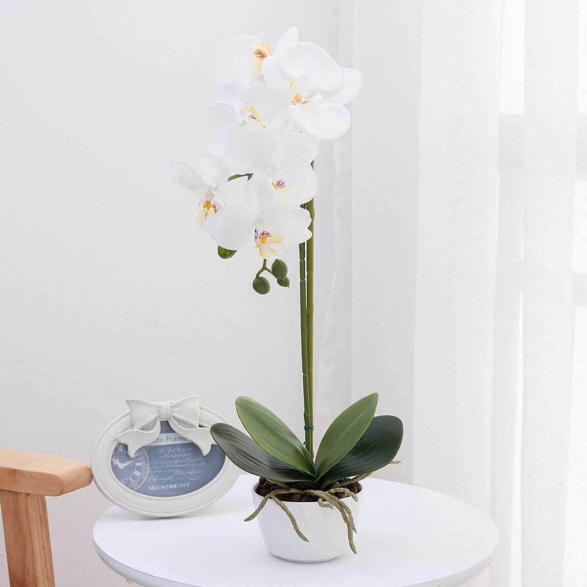 A potted plant with white flowers sits on a round white table.