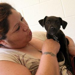Esther Perez drops off a stray puppy she found on the side of the road at the West Valley City Animal Shelter in West Valley City on Saturday, Sept. 1, 2012.