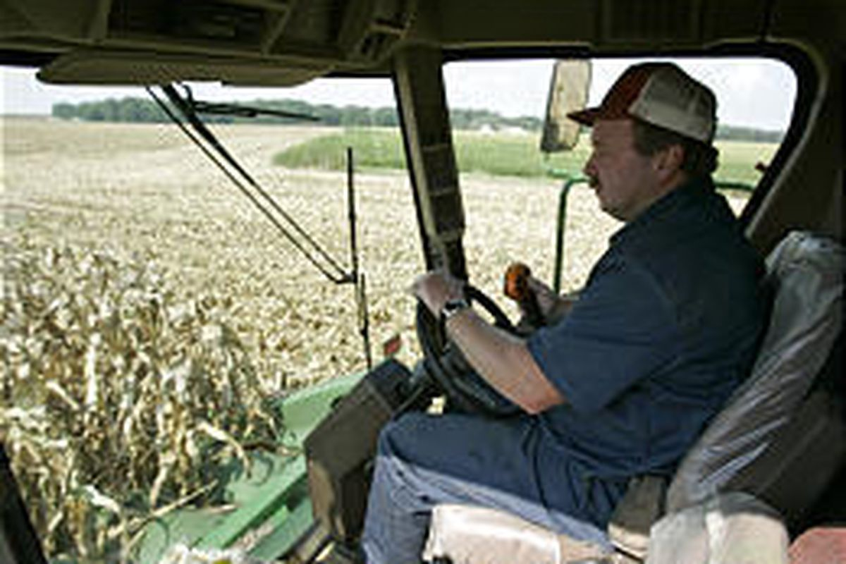 Glen Mueller sits in the cab of his combine during the corn harvest Tuesday. He expects Katrina to push up his costs and cause shipping delays.