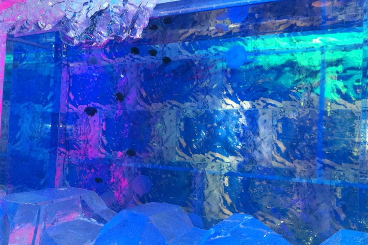 Jellyfish at Minus5 Ice Bar.