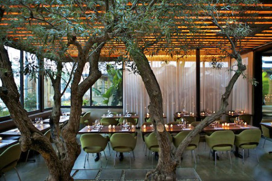 The Tasting Kitchen Updates Interior, Check Out That Foliage ...