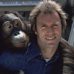 """FILE - In this 1978 file photo, Clint Eastwood and an orangutan named Clyde are shown on the set of the film """"Every Which Way But Loose."""""""