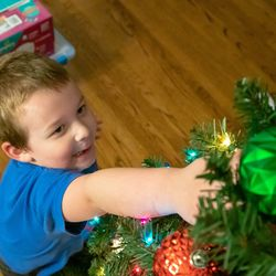 Liam reaches for an ornament on the Miller family Christmas tree.   Brian Ernst/Sun-Times
