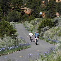 Paved bike trails, along with many mountain bike trails, wind through the Red Canyon area. The area has 37 campgrounds, with showers, flushing toilets and grills for cooking.