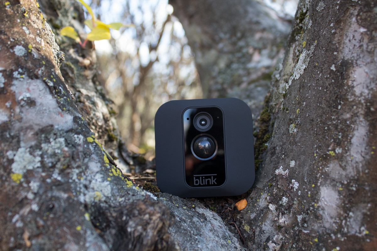 Blinks Newest Security Camera Can Be Hidden In A Tree The Verge Mini Cam Wiring Diagram Blink Xt