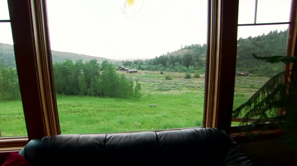 View from a living room window